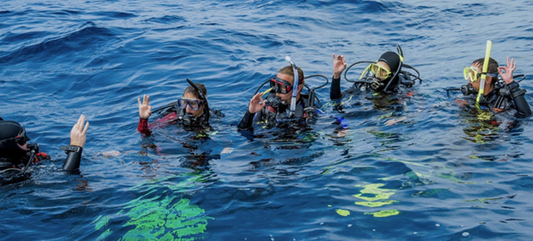Give Your Divemaster Candidate A Free Manual